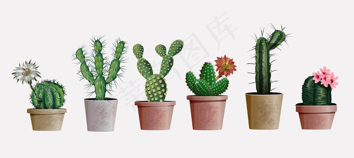 收集逼真的室内或办公室植物仙人掌进行室内设计和装饰。异国情调和流行的室内仙人掌花室内装饰的家庭或办公室。eps,ai矢量模版下载